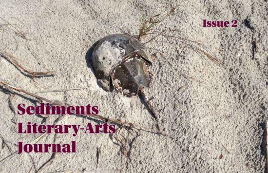 Sediments LAJ Issue 2