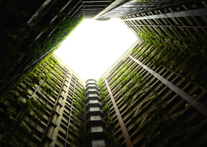 nature-building-high-rise-plants-large
