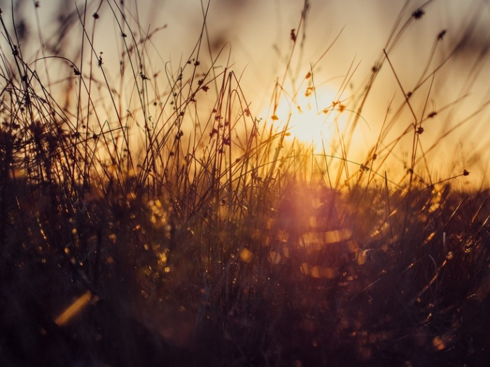 nature-sky-sunset-sun-large
