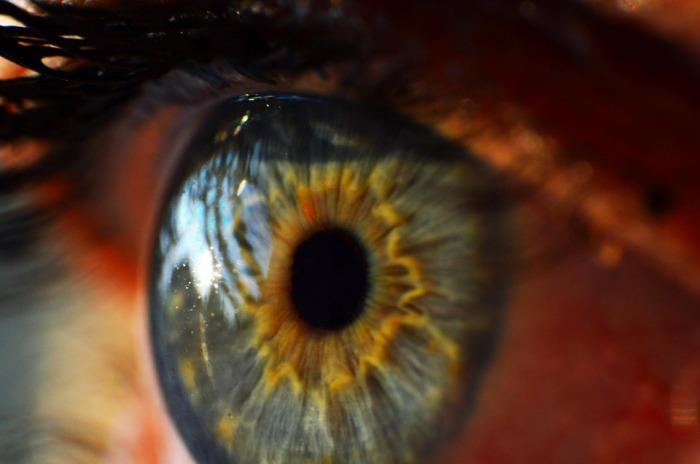 human-eye-995168_960_720